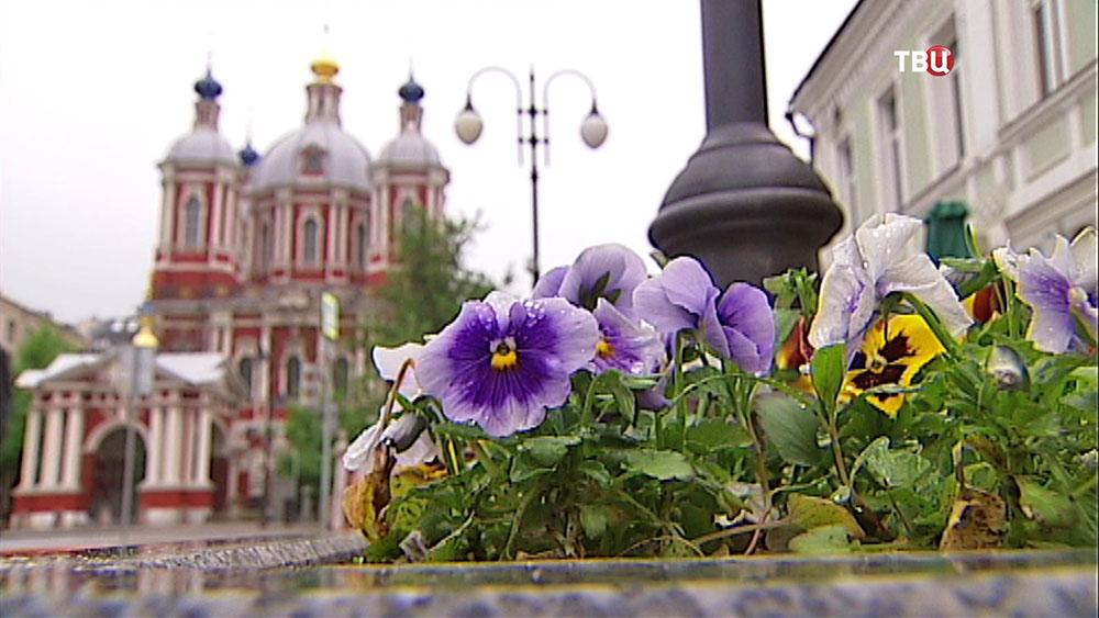 Озеленение Москвы