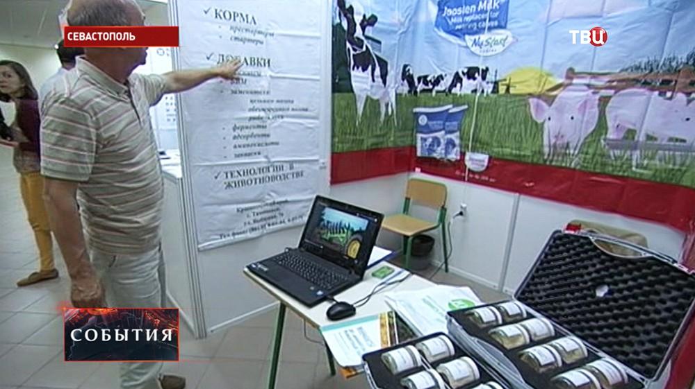 """Выставка """"Крым — юг России 2015"""" в Севастополе"""