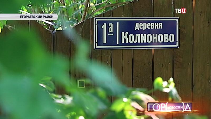 Деревня Колионово