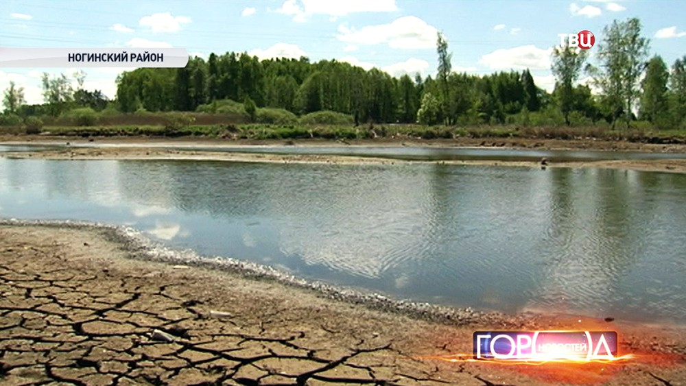 Обмелевшая река в Ногинском районе