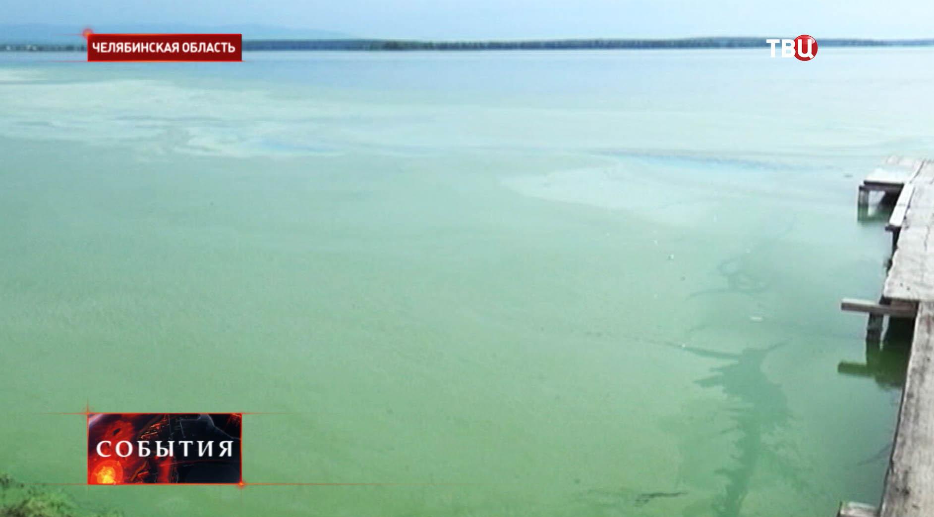 Сине-зеленый цвет воды озера в Челябинской области