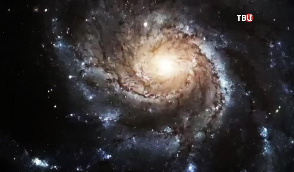 Звёздная система