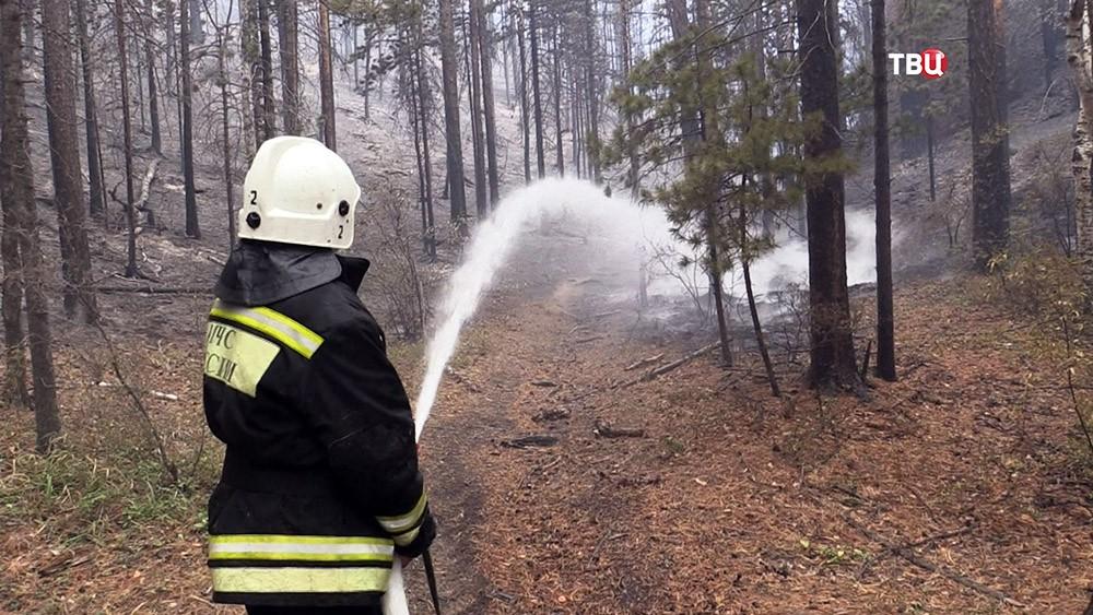 Тушение лесного пожара