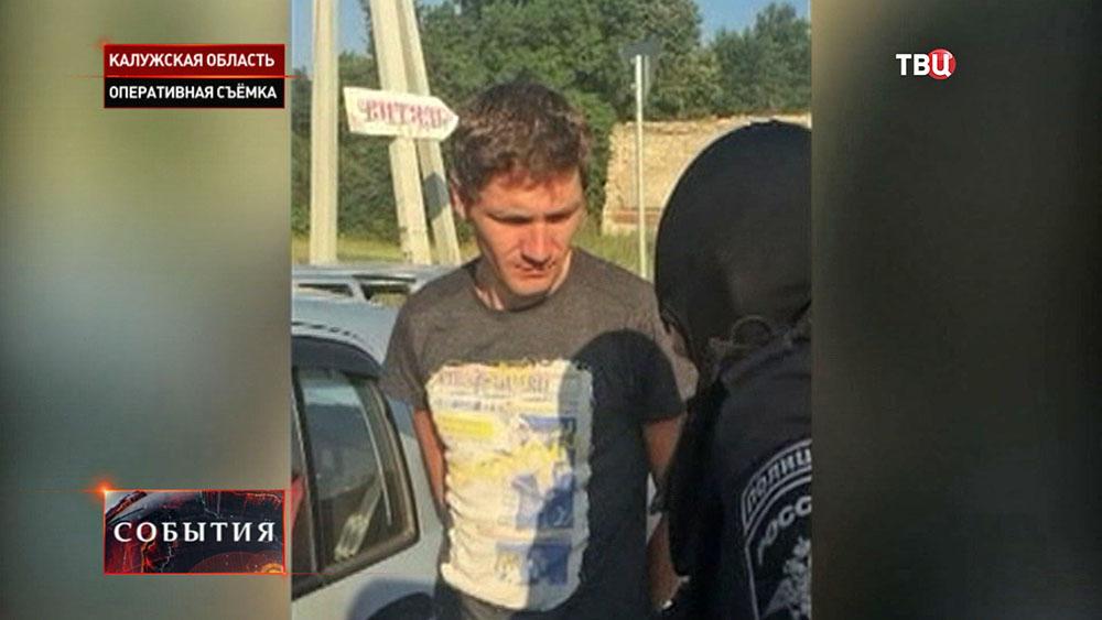 Задержание похитителей картины Айвазовского и Поленова