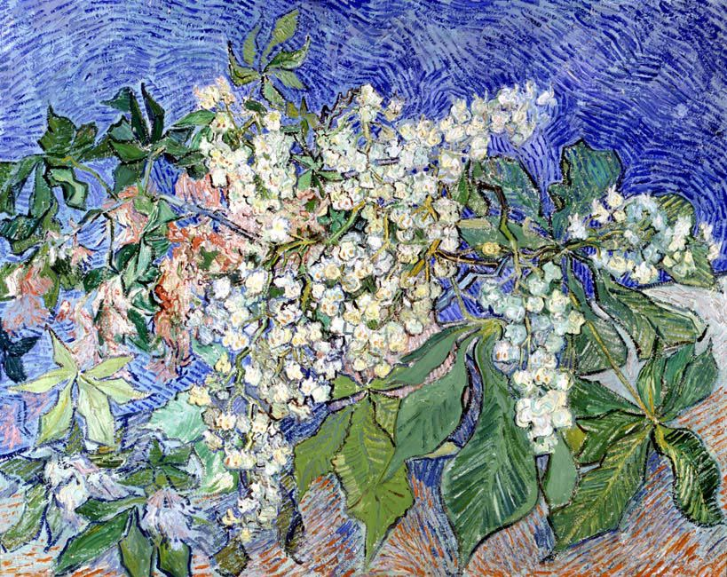 "Винсент Ван Гог ""Цветущие ветки каштана"""
