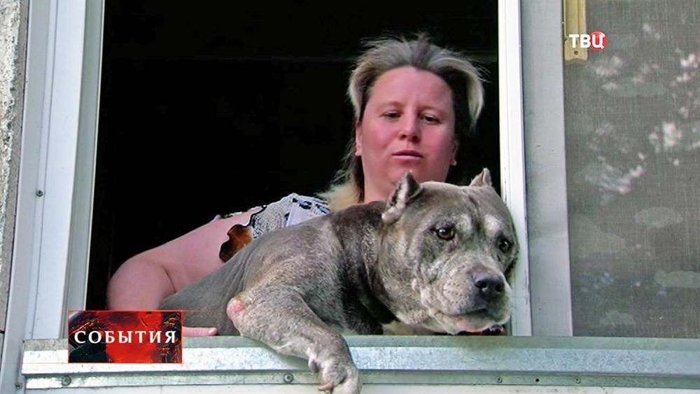 Хозяйка домашнего питомника показывает собаку через окно