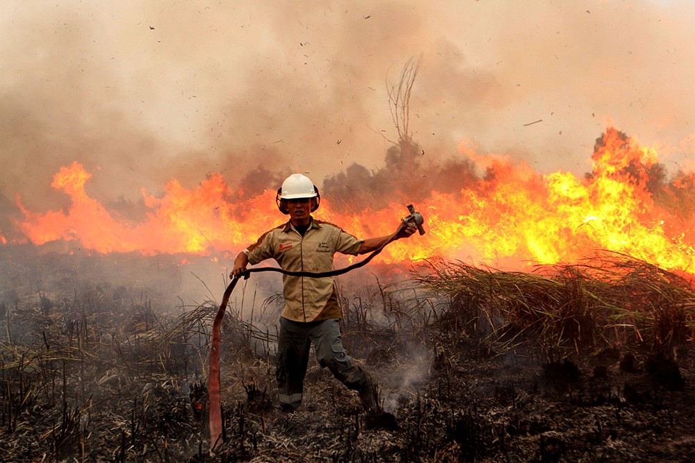 Лесные пожары в Эквадоре