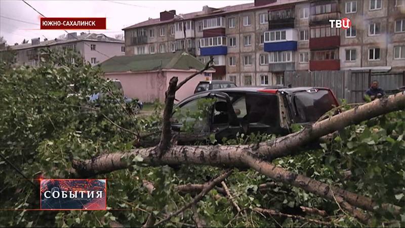 Последствие урагана на Сахалине