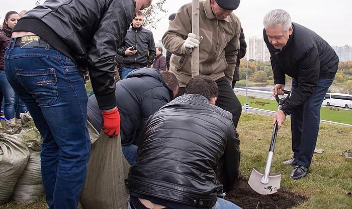Сергей Собянин принял участие в благоустройстве зелёной территории