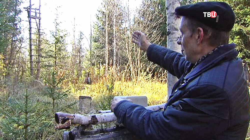 Найдена лабаз - вышка браконьеров