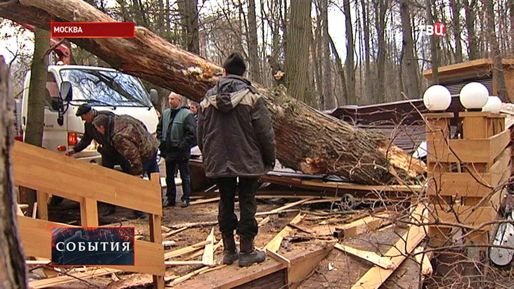 Последствие сильного ветра в Москве