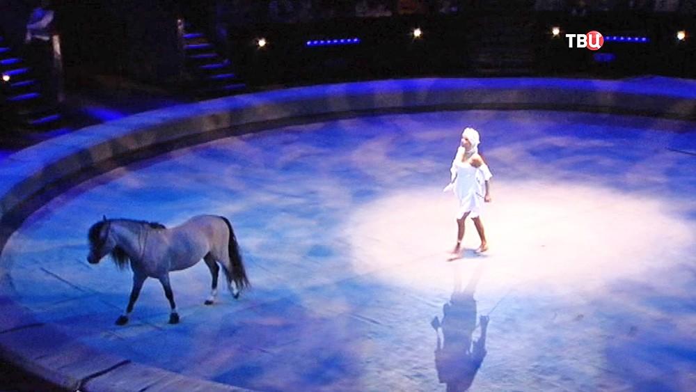 Арена цирка на проспекте Вернадского