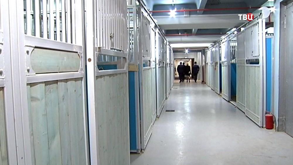 Вольеры для животных в цирке на проспекте Вернадского