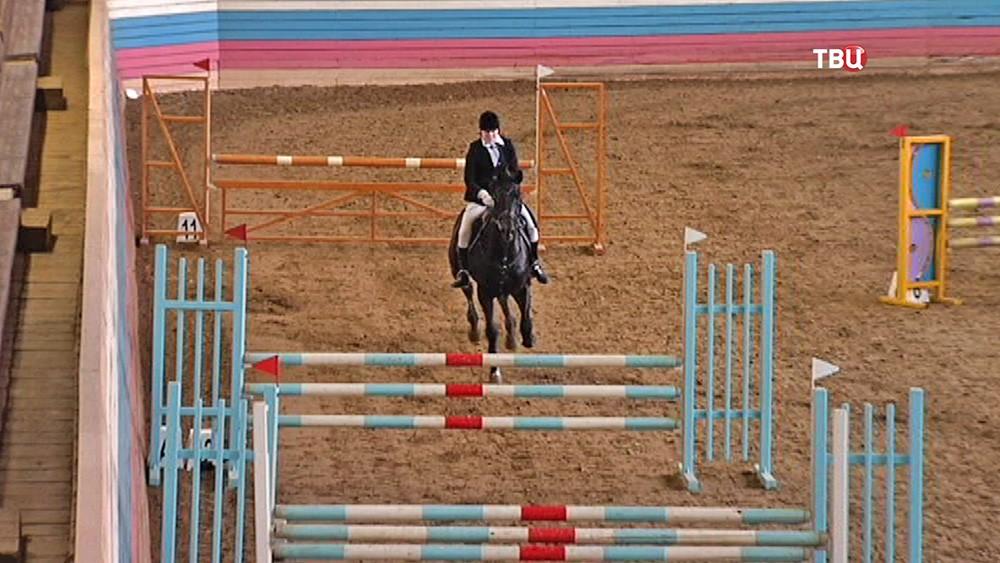 Турнир по конному спорту