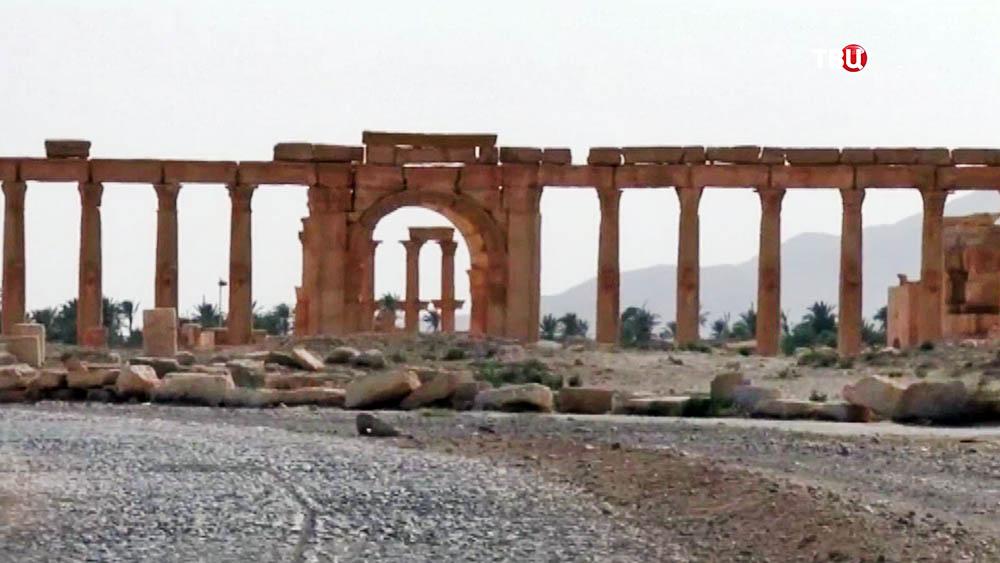 Развалины в сирийском городе Пальмира