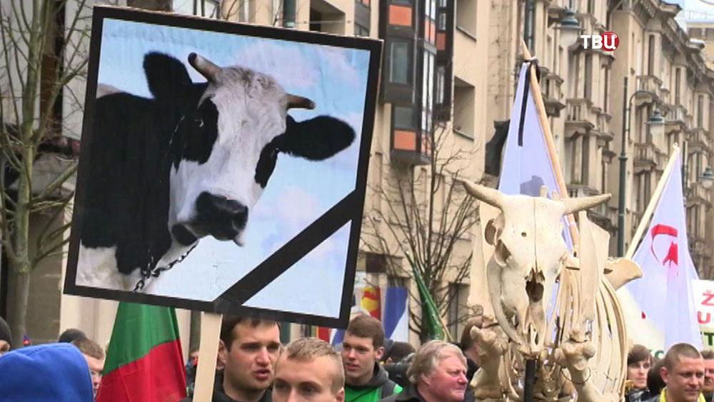 Акция протеста литовских фермеров