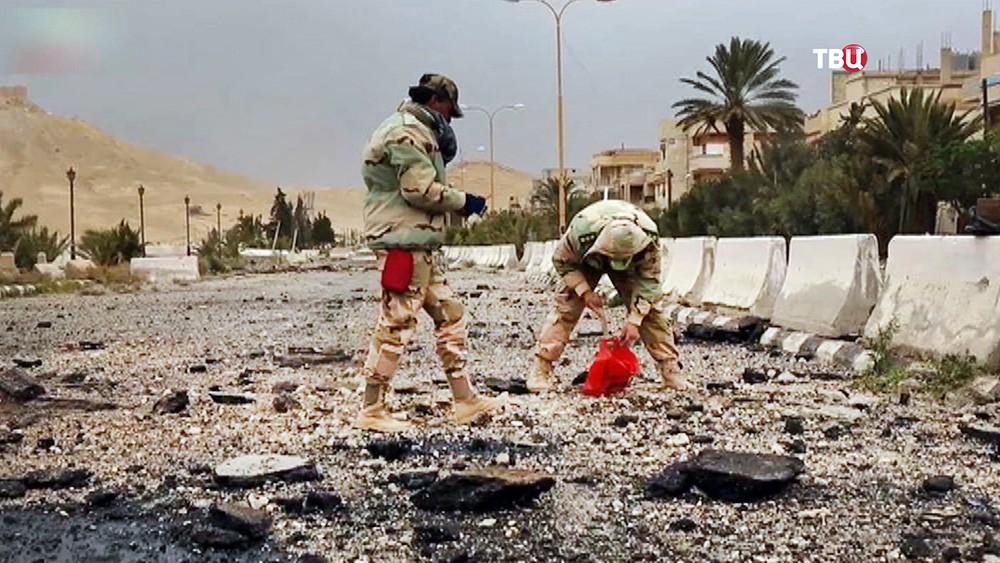 Саперы в Сирии