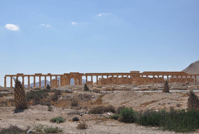 Древние колонны в Пальмире