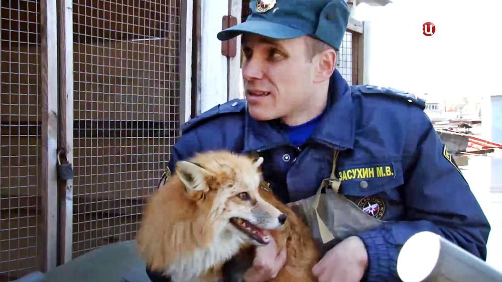 Сотрудники МЧС эвакуируют животных зоопарка из зоны паводков