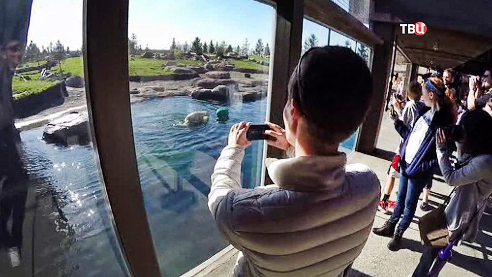 Посетители американского зоопарка