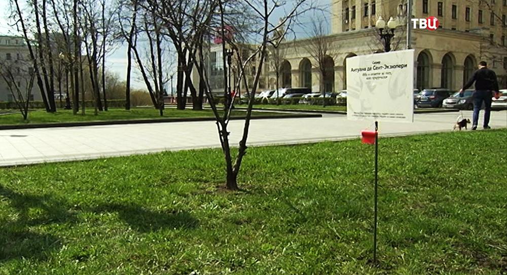 """Табличка с надписью """"Сквер Антуана де Сент-Экзюпери"""""""