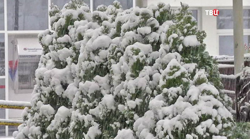 Последствия снегопада в Европе