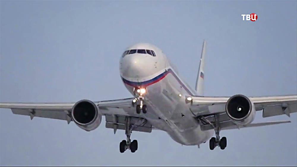 Девочка-аэрозаяц прилетела в Москву вместе с мамой
