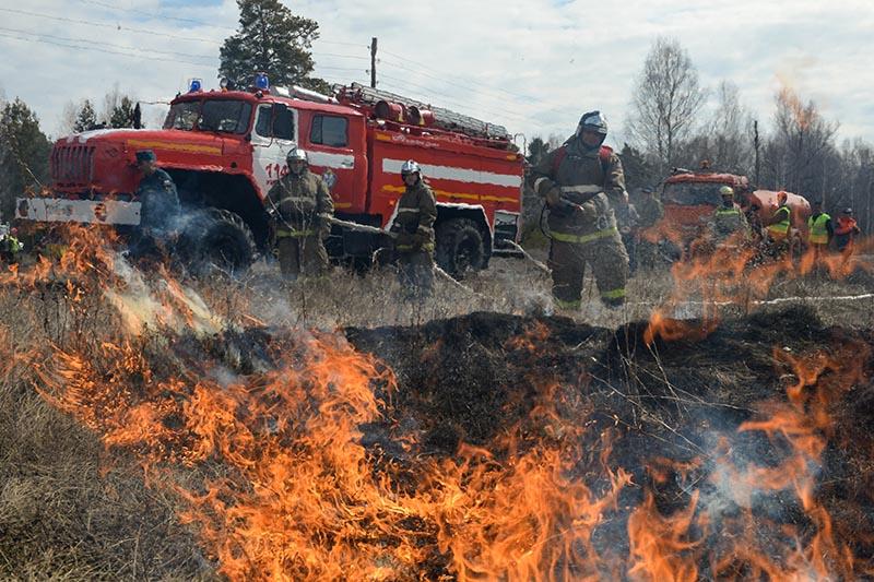 Сотрудники пожарной охраны МЧС России борются с последствиями природных пожаров