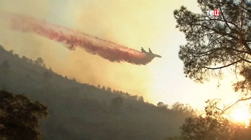 Пожары в США