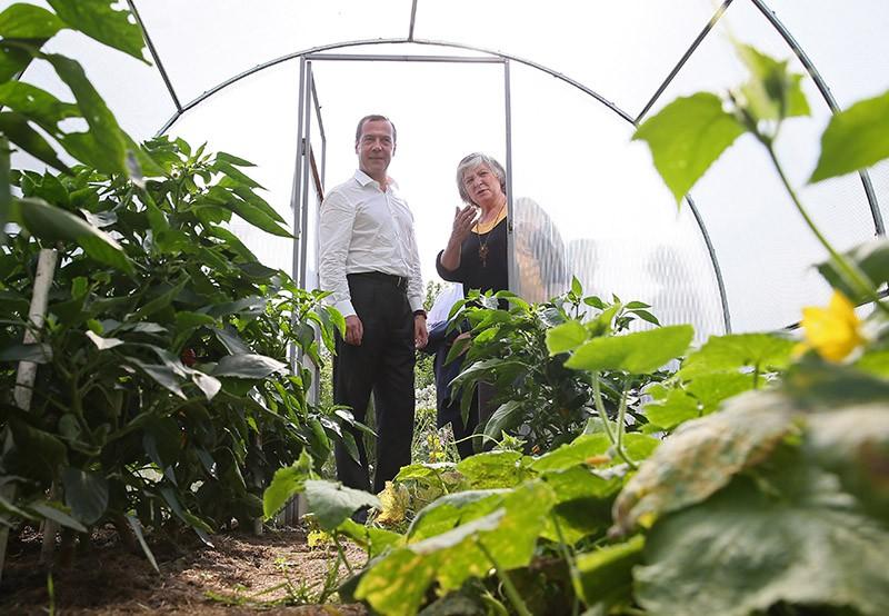 Председатель правительства РФ Дмитрий Медведев во время встречи с представителями садоводческих, огороднических и дачных хозяйств