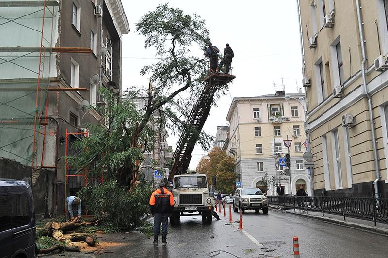 Работники коммунальных служб ликвидируют последствия урагана