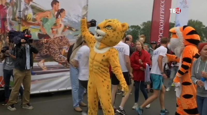 Участники благотворительного забега в защиту амурского тигра