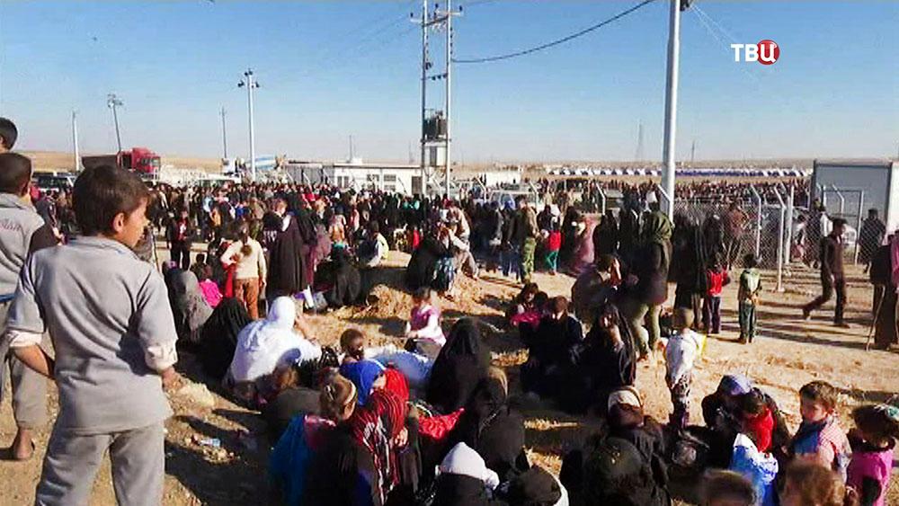 Беженцы из Ирака