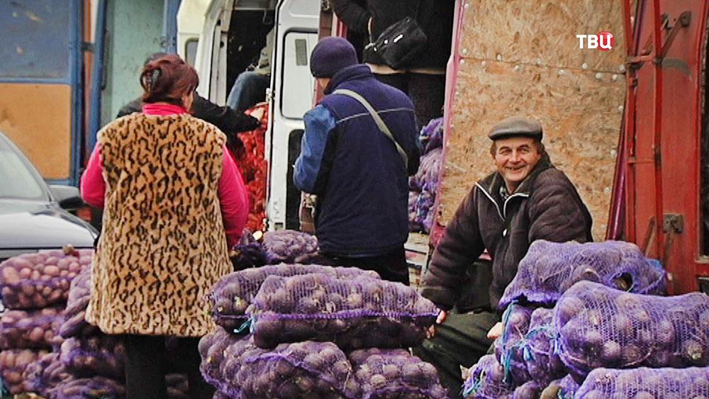 Фермеры Молдавии