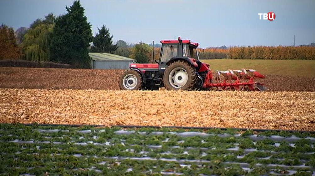 Фермерское хозяйство в Бельгии