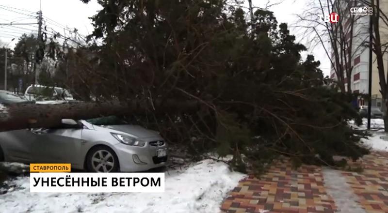 Последствия мощного урагана