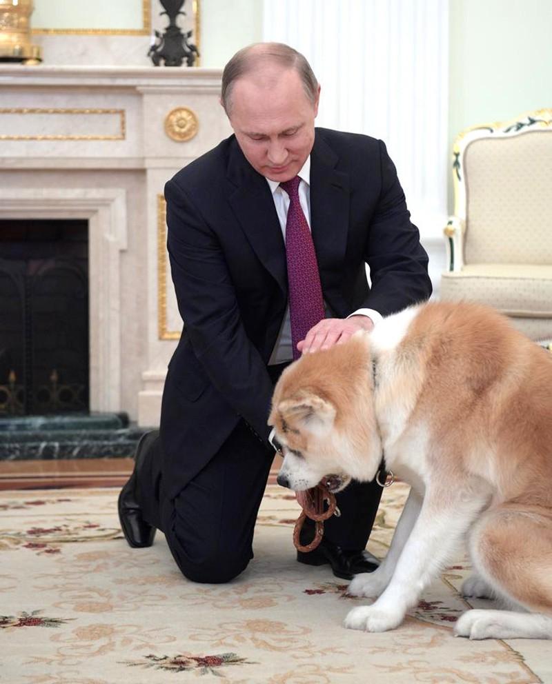 Владимир Путин и собака Юмэ