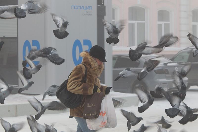 Морозная погода