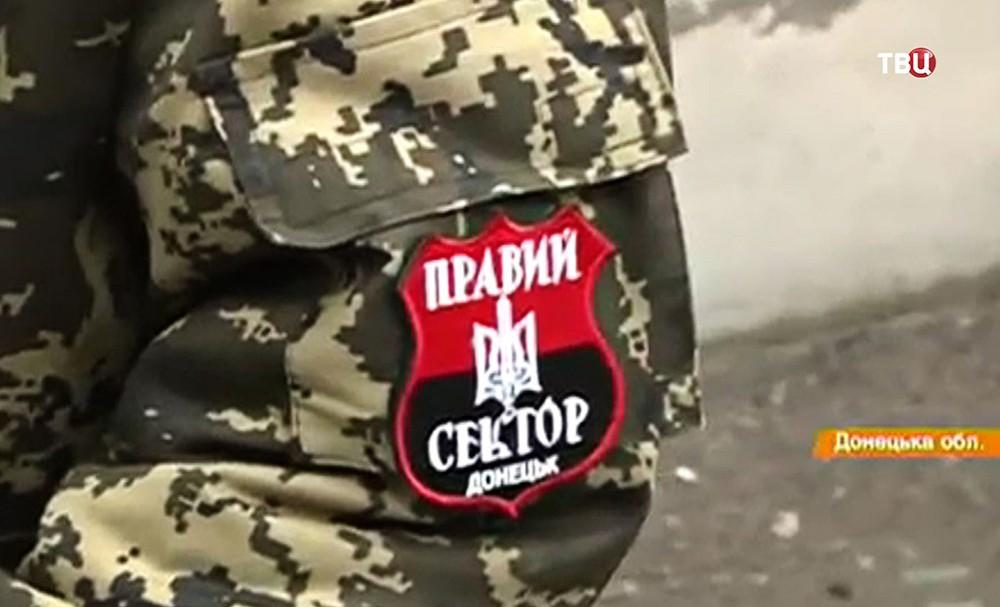 """Шеврон запрещенной в России организации """"Правый сектор"""""""