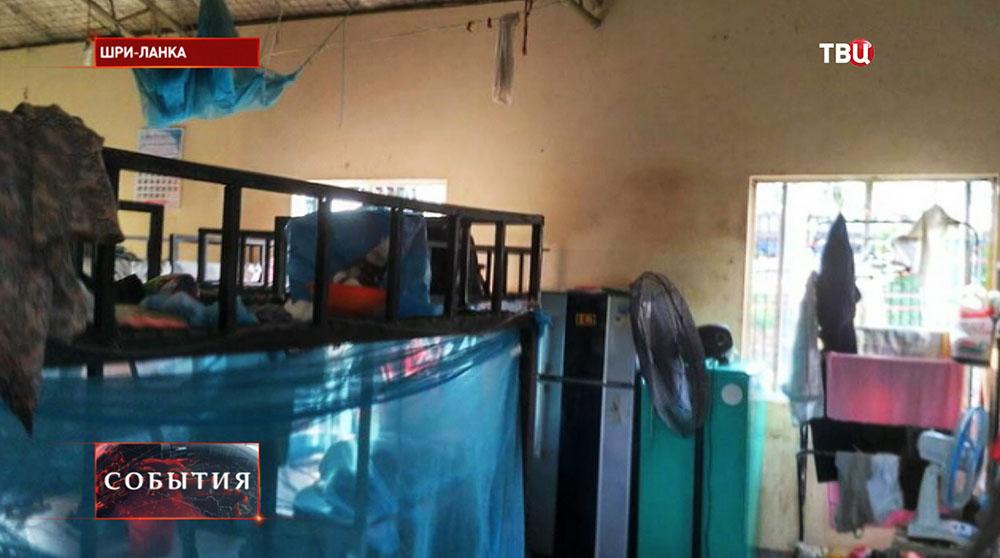 Условия содержания российский туристов на Шри-Ланке