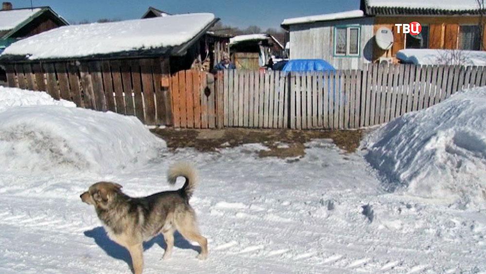 Поселок в Хабаровском крае