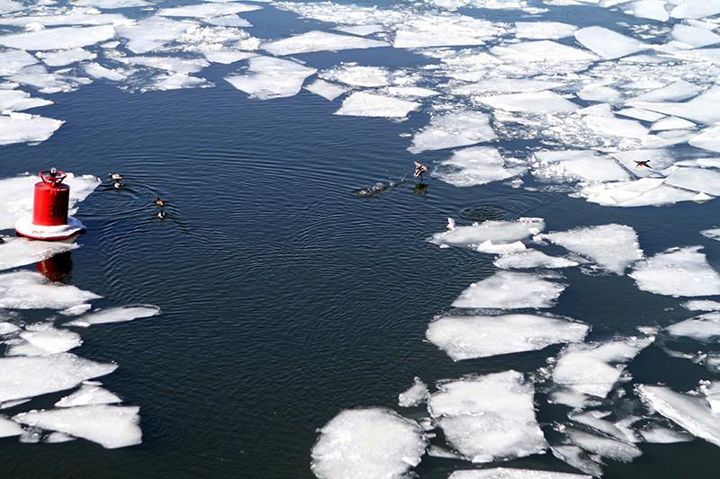 Ледоход на Москве-реке