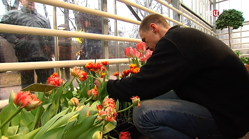 """Посетителям раздают цветы в """"Аптекарском огороде"""""""