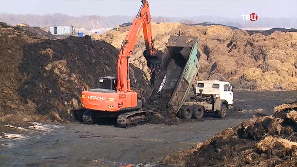 Рекультивация территории прудов нефтеперерабатывающего завода в Омске