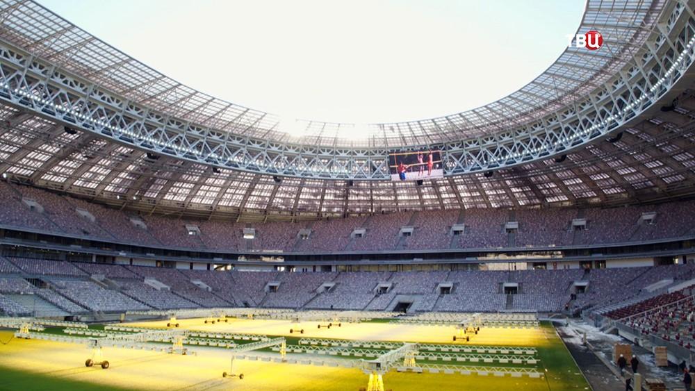 """Реконструкция стадиона """"Лужники"""""""