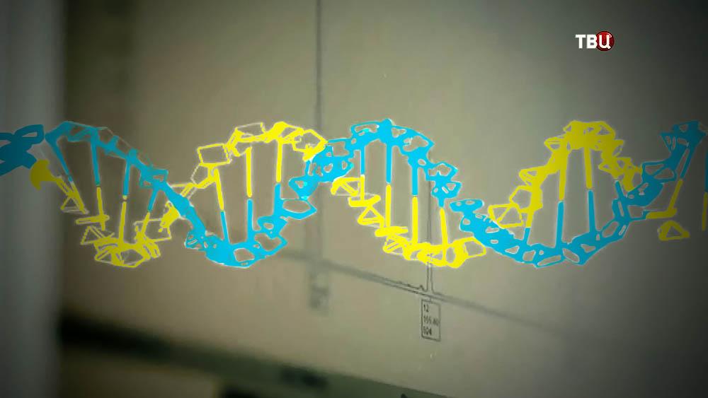 Украинская цепочка ДНК