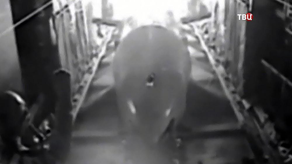 Сверхмощная бомба GBU-43/B Massive Ordnance Air Blast Bomb