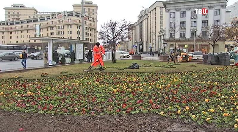 Озеленение в Москве