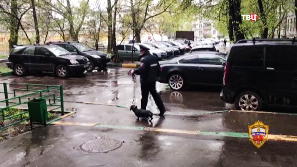 Полиция нашла похищенную таксу