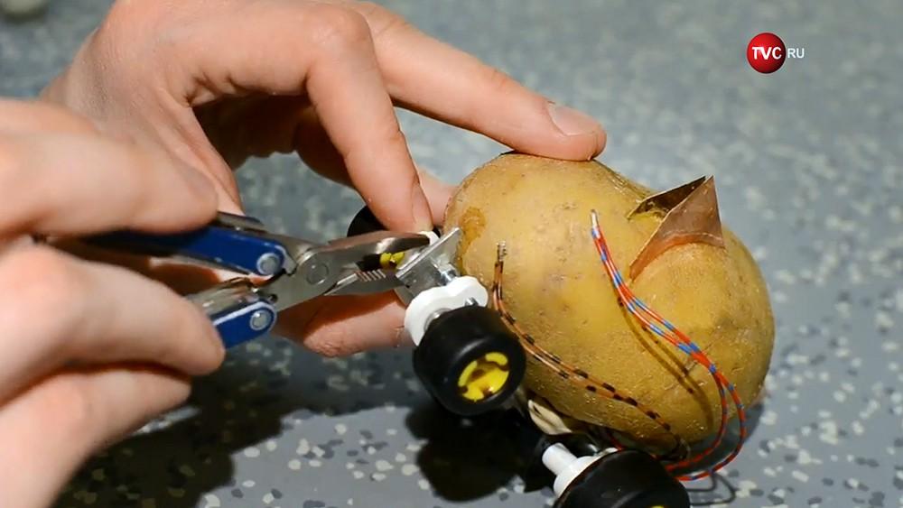 Машинка на картофельной тяге